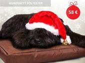 Wenn Sie Ihrem #Hund eine Freude zu #Weihnachten machen wollen, zeigen Sie, dass… – Hunde- und Katzebetten