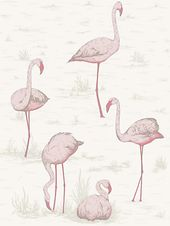 Cole & Son Flamingos Wallpaper, Pink, 95/8045