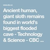 Ancient human, giant sloth remains found in world's biggest flooded cave | CBC News