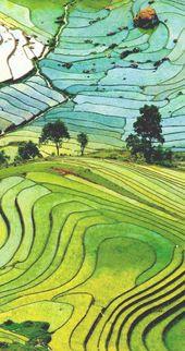 Schöne landschaft über terassenförmig angelegtes reisfeld in der provinz laocai, vietnam | 17 Unglaubliche Fotos von Reisfeldern. Atemberaubende Nr. # 15