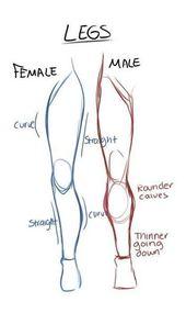 Photo of Gender Legs Drawing Referenzhandbuch | Zeichnen von Referenz…
