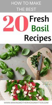 Frischer Basil Caprese Salat