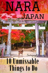 Top 10 Unmissable Things to Do in Nara