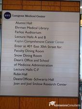 Cornell University Cornell University Medical College Medical School