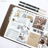BRILLIANT Bullet Journal Aim Tracker Hacks {Make issues occur in 2019!}