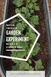 Looking for a new way to grow your vegetable garden in raised beds? Click here t…