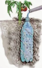 Die besten 17 Bilder zu jardinage auf Pinterest | Theaterstücke ...