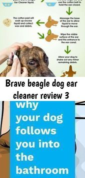 Brave Beagle Dog Ear Cleaner Bewertung 3