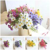 Pin Oleh Nanci Lima Di Preferidos Gambar Bunga Bunga Aster