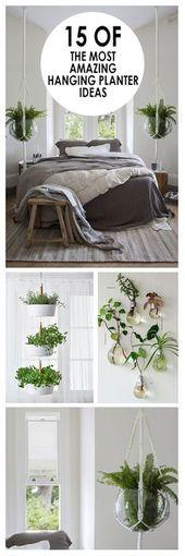 Gardening, house backyard, backyard hacks, backyard suggestions and methods, rising vegetation, pl…
