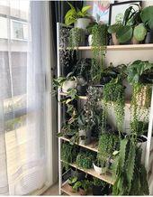 Erstellen Sie eine Ecke für Ihre Pflanzen und reservieren Sie Momente, um sich um sie zu kümm…