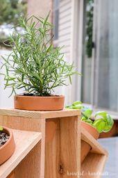Pin On Indoor Herbs Garden