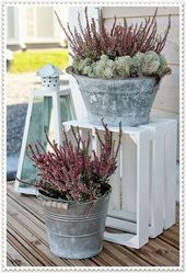 Decorate the garden with wooden boxes! Here are 20 ideas to inspire you