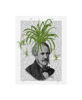 Fab Funky Spider Plant Head Canvas Art – 36.5 x 48
