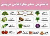 باشترین سەرچاوەکانی پڕۆتین Food Combining Health And Nutrition I Foods