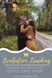 Ovulation Tracking – Berechnen Sie die fruchtbarsten Tage  – Pregnancy