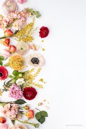 Endless gorgeous images for your Instagram feed. Floral Flatlays. – flowers in your hair