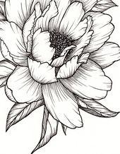 Peony Flower, Art PRINT of Pen Illustration, Flower Drawing, Floral Tattoo, Botanical Line Drawing, Feminine Art, Peony Tattoo, Wall Decor