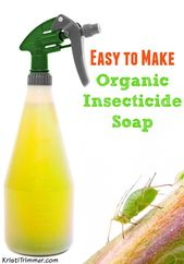 Easy to make organic insecticidal soap   – Organic gardening tips