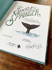 Baby Ilustration The Spirit of Springer - Picture book
