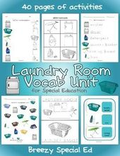Laundry Vocab Unit for Particular Training