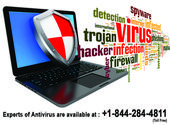 Your any kind of Antivirus issues resolved by our certified technical support te…