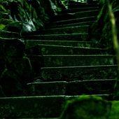 Machen Sie Schritte in einem Gartenspaziergang   – outside please