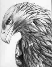 Eagle Tattoo – 250+ Image Ideas – zeichnungen