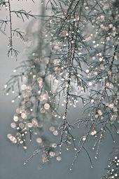 Glanz steht der Winter Persönlichkeit besonders g…
