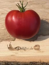Bozener Riesen Ochsenherz Tomate Alte Lokalsorte Aus Sudtirol Fleischtomate Tomaten Tomaten Sorten