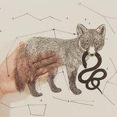 Die zarten Papierschnittarbeiten von Kanako Abe – Journal du Design