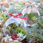 DIY TUTORIAL – Succulent Holiday Ornaments!