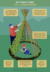 Gärtner, die in städtischen oder vorstädtischen Gebieten leben, lassen sich oft entmutigen, was | Kl – Garten & Gemüseanbau mit Kindern