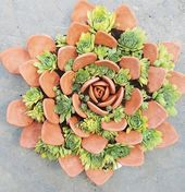 Decided to put some #succulents within a sculpture I made. Let's see how they ta…