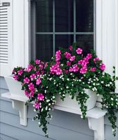 63 easy container backyard flowers concepts 13 » media-directory.org
