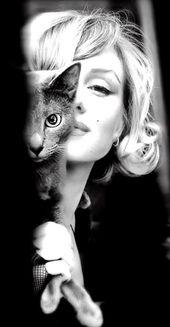 Sind Sie eine verrückte Katzenlady?