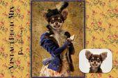 Custom digital pet portrait, Oil painting cat portrait, Victorian pet portrait, Funny photo gift, Pet lover gift, Personalized poster, Cute