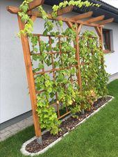 – #untitled – Gartengestaltung Sichtschutz