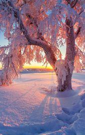 """""""Wir sind ein kaltes Verhalten um uns herum, das u… – #das #ein #herum #kaltes #paisaje"""
