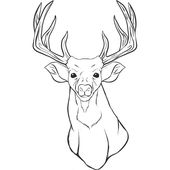 Deer Coloring Pages Deer Coloring Pages New Realistic Deer Pages Coloring Pages Of Deer Coloring Pages New De Deer Coloring Pages Coloring Pages Coloring Books