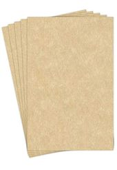 11 X 17 Stationery Parchment Recycled Paper 65lb Cover Cardstock 50 Sheets Per Pack Aged Recycled Paper Card Stock Stationery
