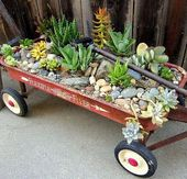 Vintage Red Flyer Wagon – Planter With Succulent Plants