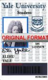 Yale Identity Tudent Id Card Design Novelty Id Yale Student Card