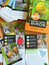 Card games and books from BirdcagePress that are great for young naturalists