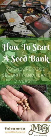 How To Start A Seed Bank & Why You Need One