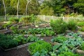 Tipps und Tricks zur Gestaltung von Gemüsegärten Seite 5 von 6 #gemusegarten #desi   – portable garden