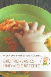 Beginn des Babys. Worauf müssen Sie bei BLW und Breiferier Beikost achten? W …   – Babyled Weaning Informationen und Tipps