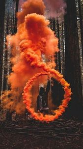 Cicle der Rauchorange in Waldbaumgrün