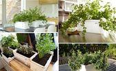 Moderne Systeme machen Ihren Kräutergarten pr – Kleine Balkonideen   – Kleiner Balkon
