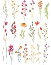 Wilde Blume Aquarell Clipart, Aquarell Wildblumen,…